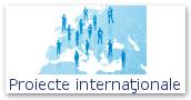 Proiecte internaţionale